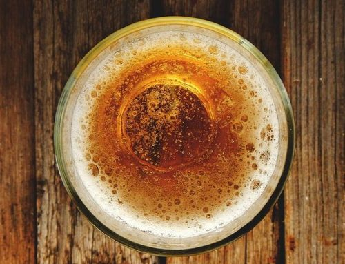 Understanding the Beer Basics